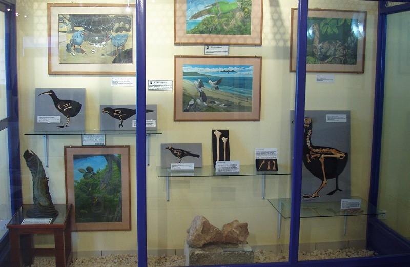 THE FRANCOIS LEGUAT MUSEUM